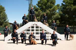 CHP Canine Academy Graduation Adds 3 Police Dogs to Golden Gate Division, serving the Bay Area